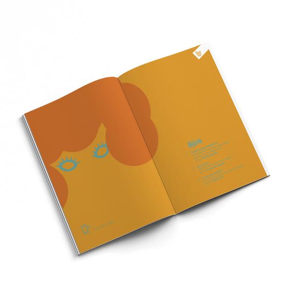 brochure bjork